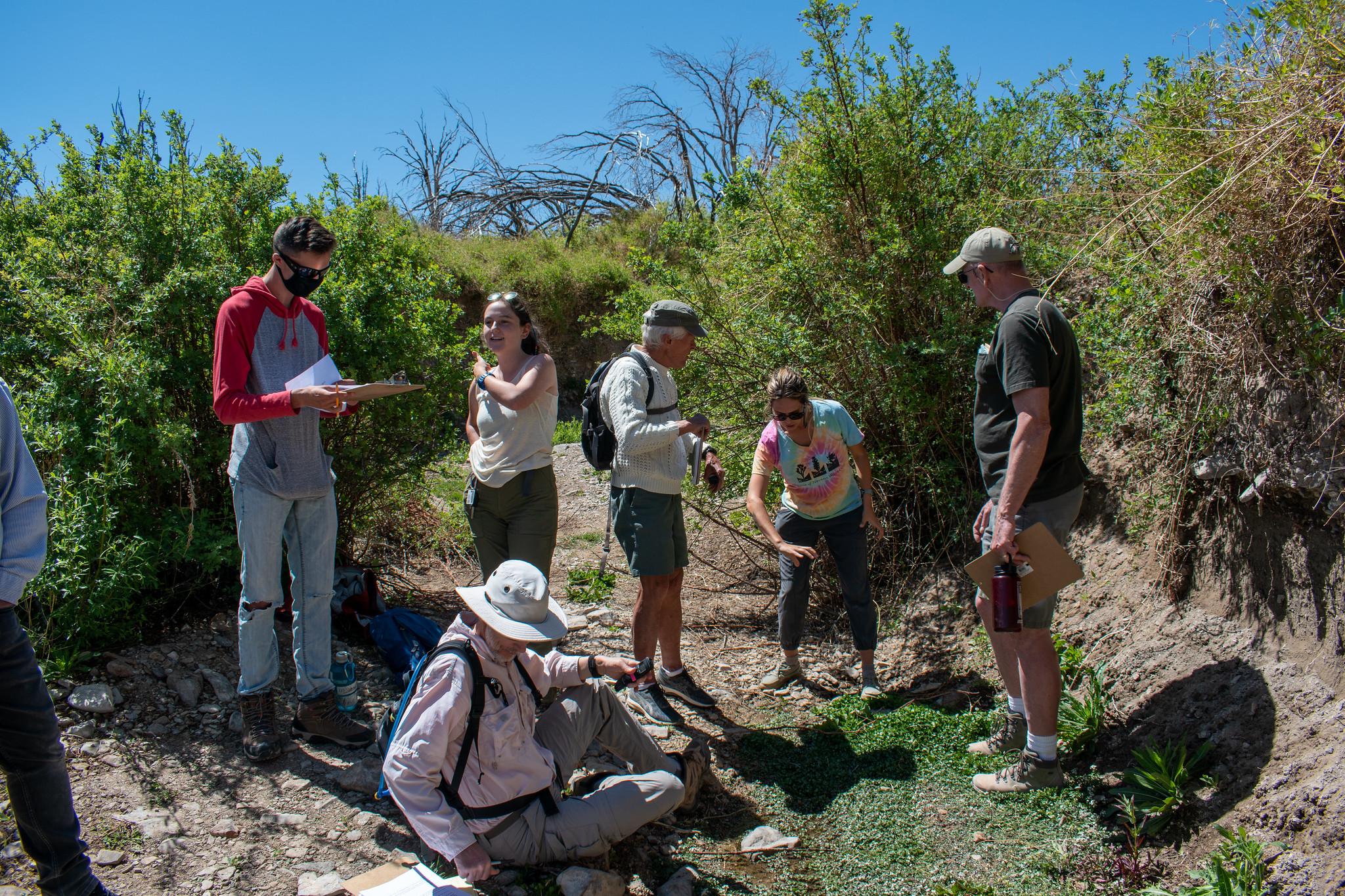 Volunteers survey a spring