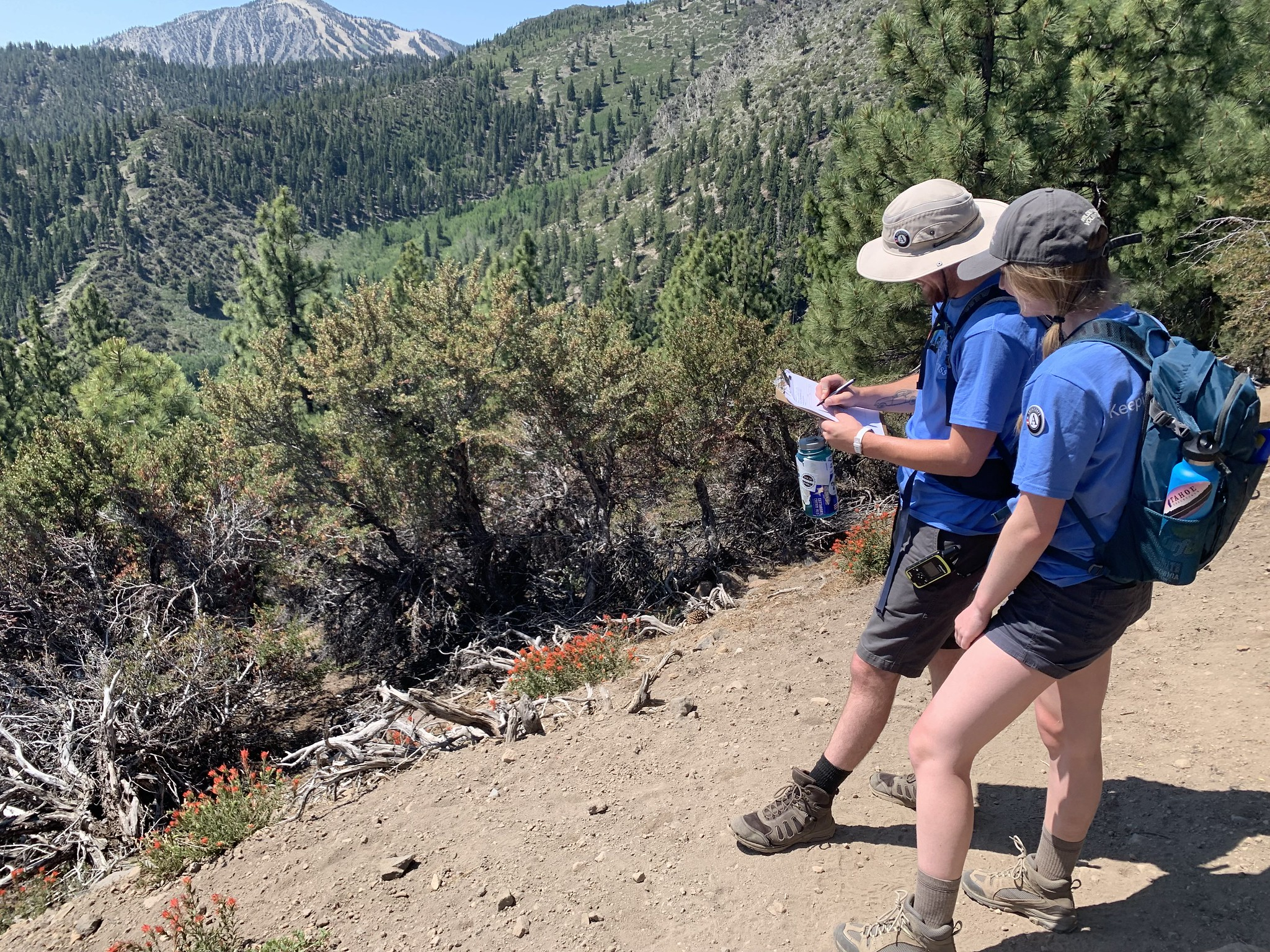 Our Wilderness Techs in the Jones/Whites Area