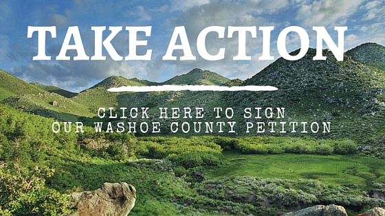 Take_Action_Washoe.jpg