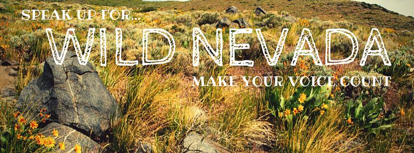 Wild_Nevada_Make_Your_Voice_Count.jpg