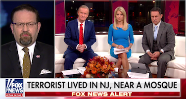 Gorka_Fox_Friends_110117.png