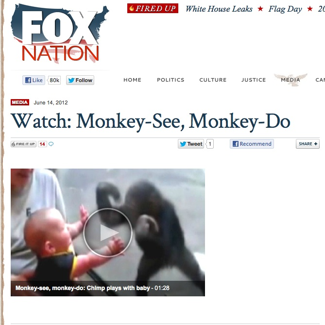 monkey_article.jpg