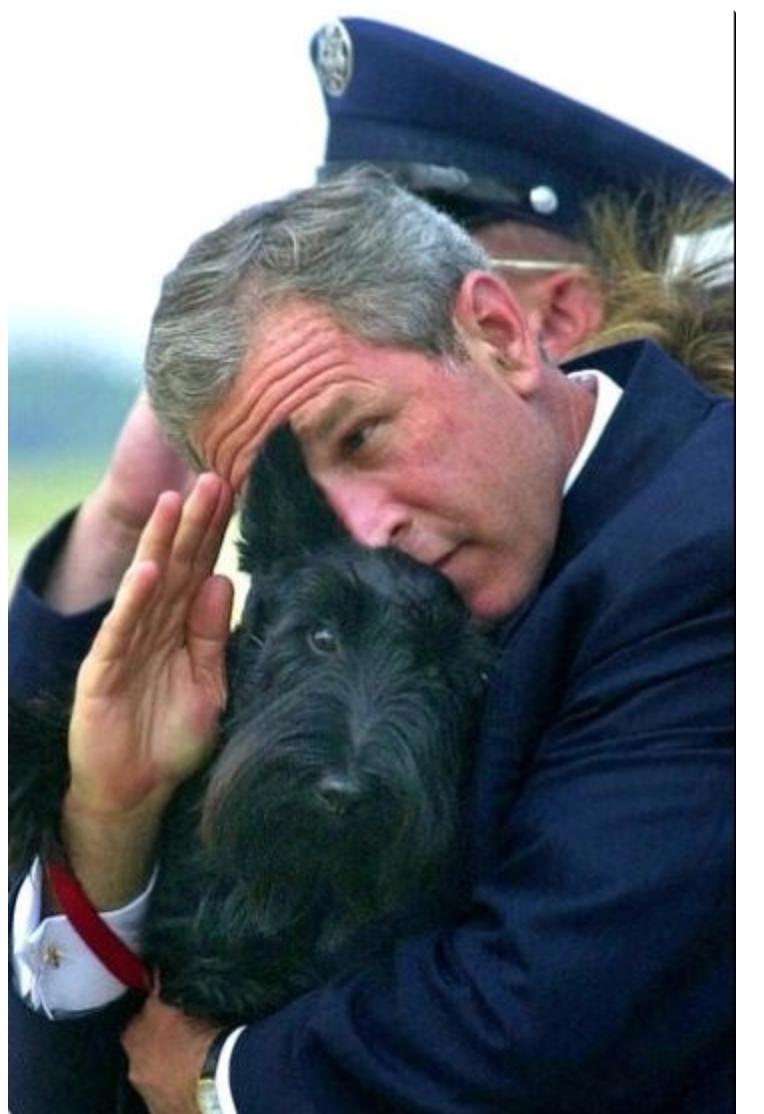Bush_salute.png
