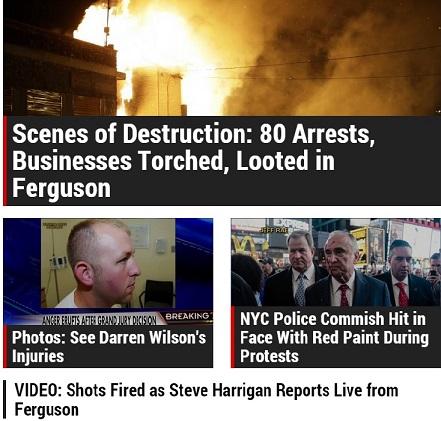 Ferguson_I.jpg