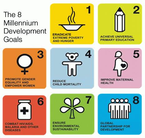 8_millennium_development_goals.jpg