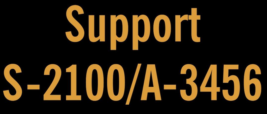 Support Legislation Flyer