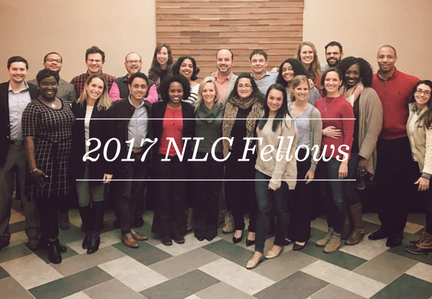 Meet our 2017 Fellows