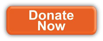donate_now_2.jpg