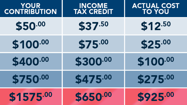 Contribution Chart with Tax Benefits