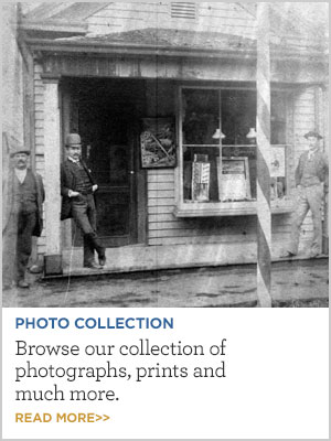 The Photo Collection