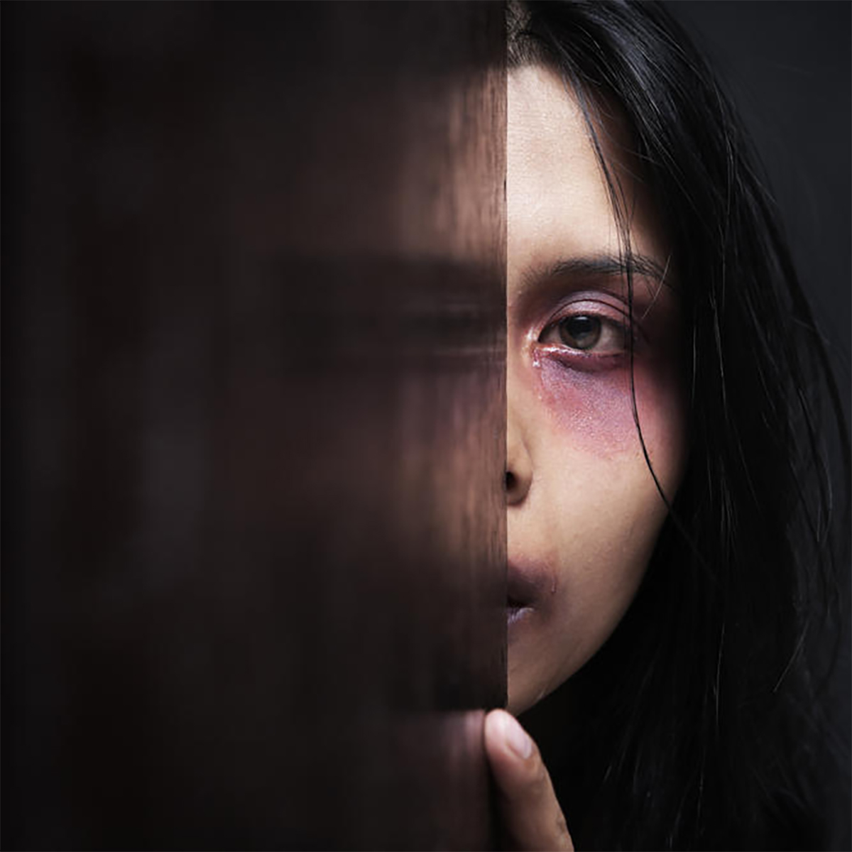 Domestic Violence in Our Community