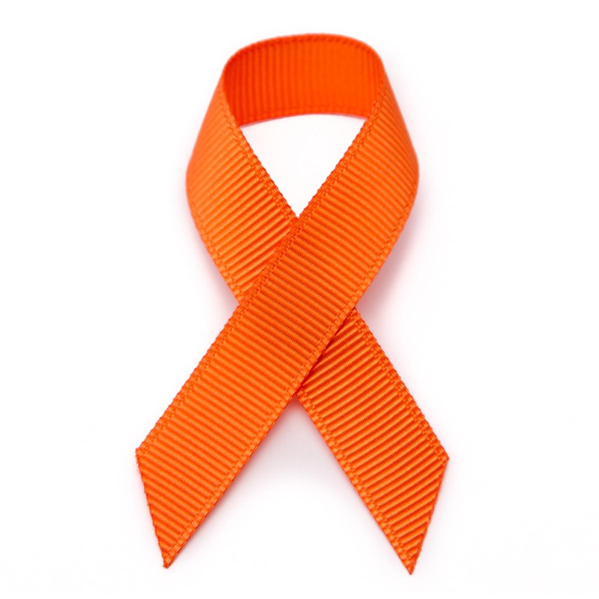 Break the Silence, Stop the Violence: Wear Orange Day