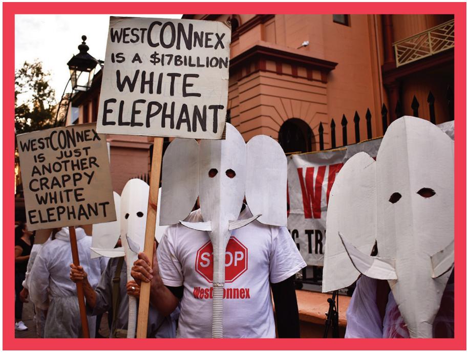 white_elephants.PNG