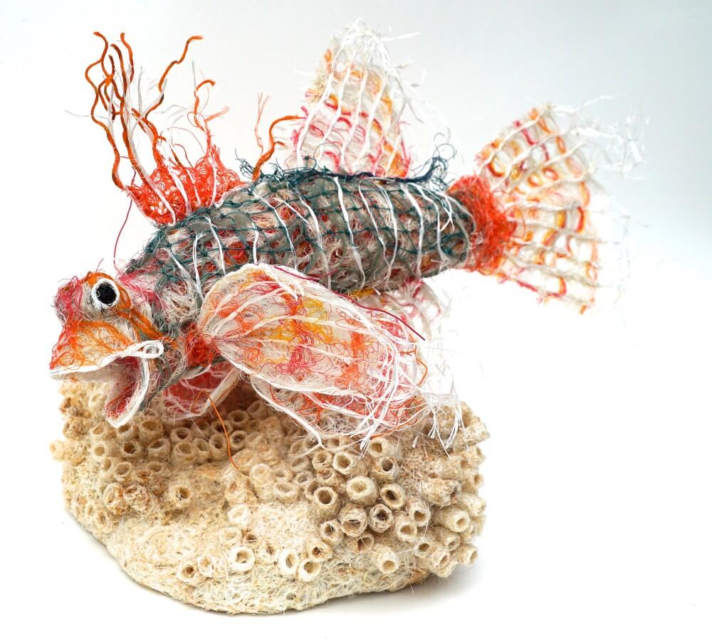 Reef Rambler from Final Curtain