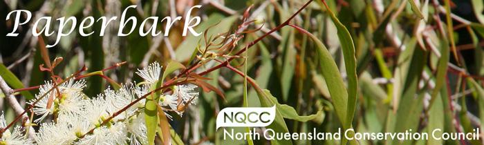 paperbark NQCC newsletter banner