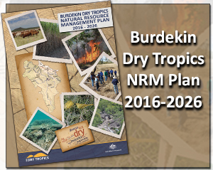 Burdekin NRM plan
