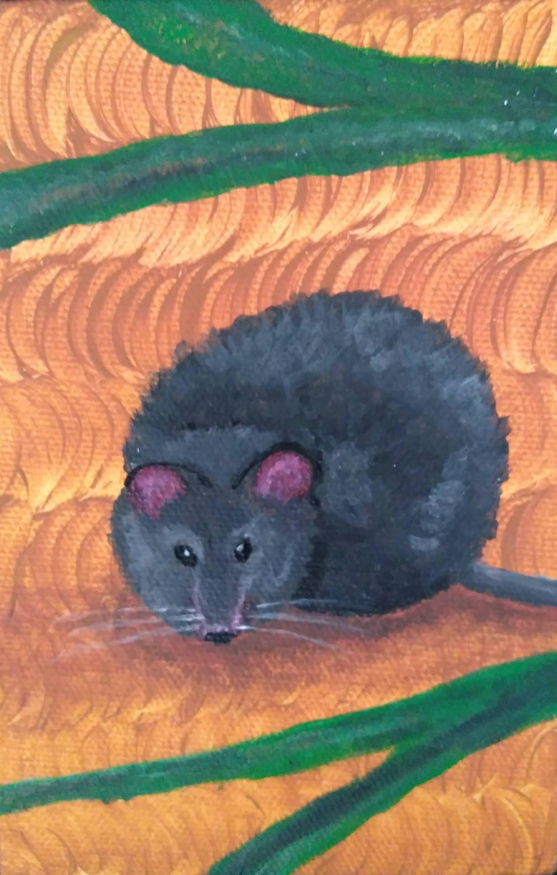 64_Monita_Gangavarapu__Antechinus-_Marsupial_Carnivore.jpg