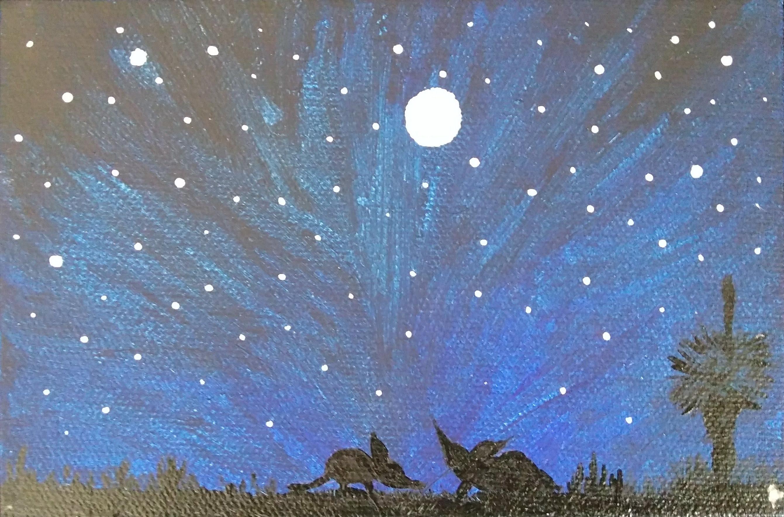 65_Monita_Gangavarapu__Stargazing_Bilbies.jpg