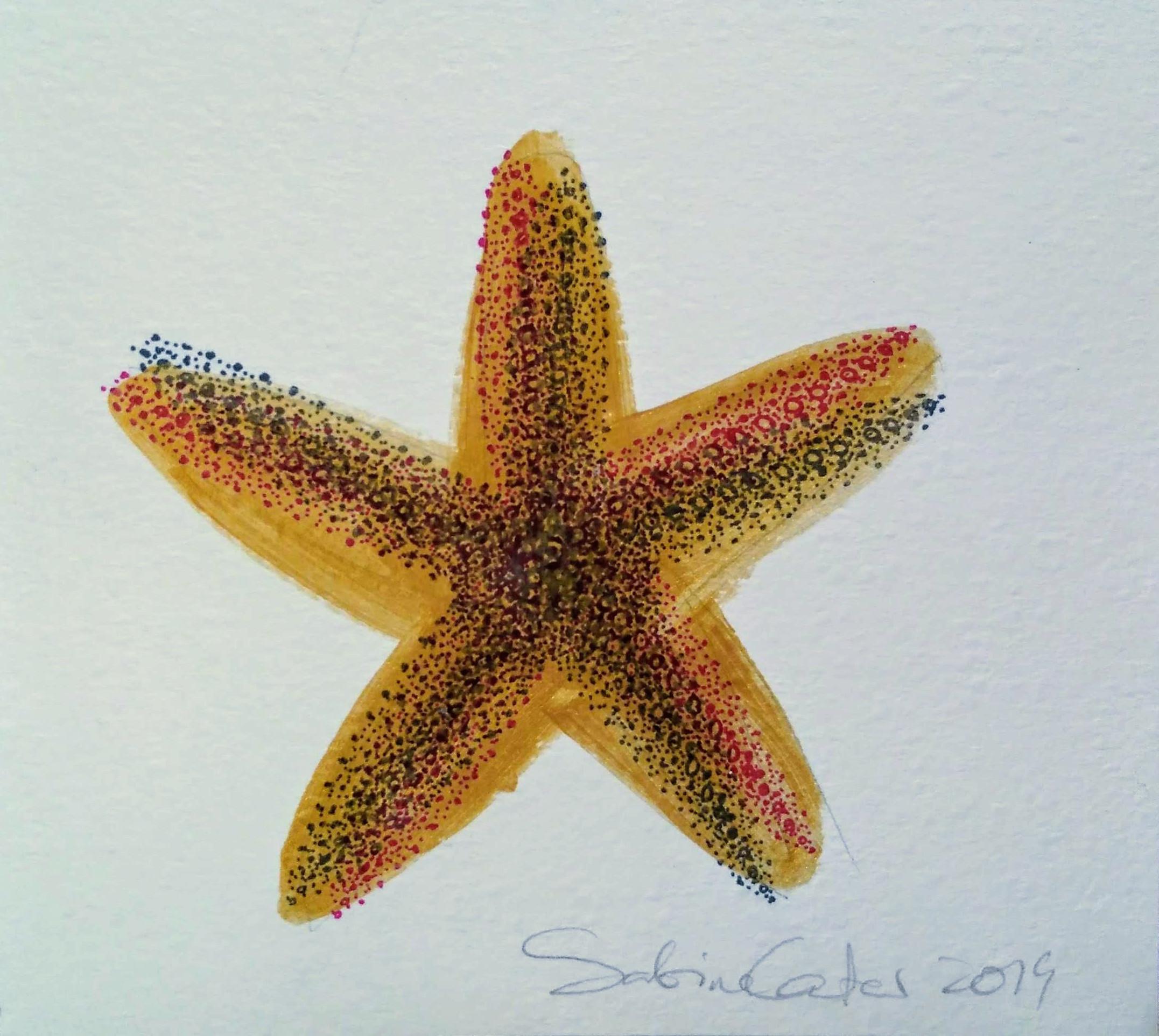 59_Sabine_Carter__Golden_Starfish.jpg