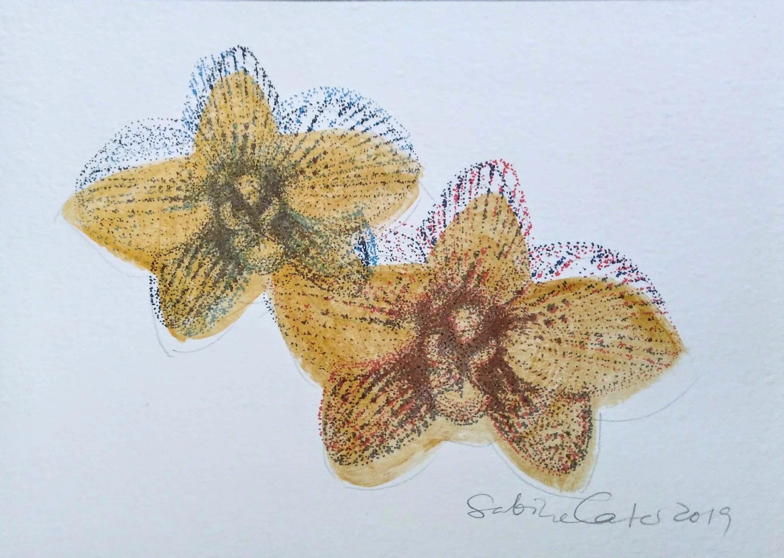 57_Sabine_Carter__Golden_Orchids.jpg