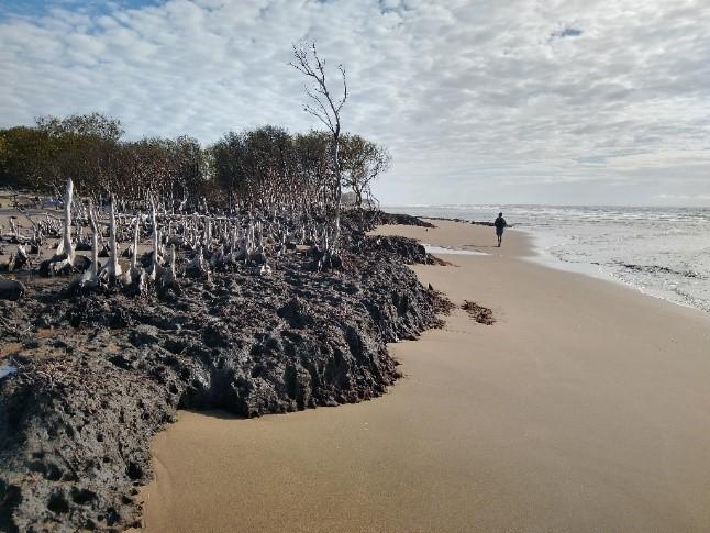 Cape Bowling Green erosion