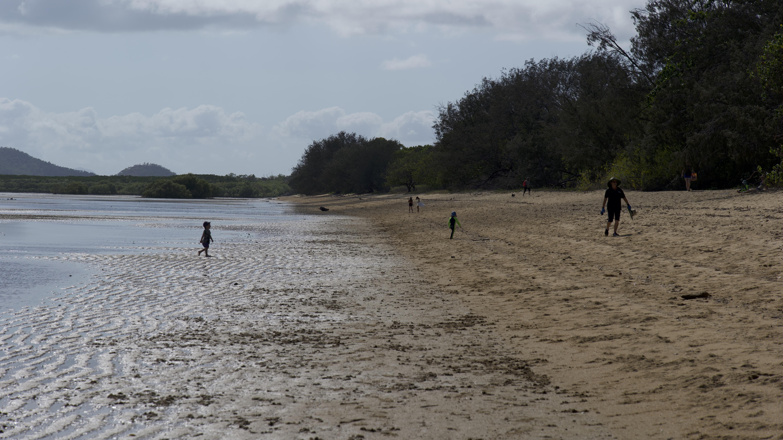 Bushland beach