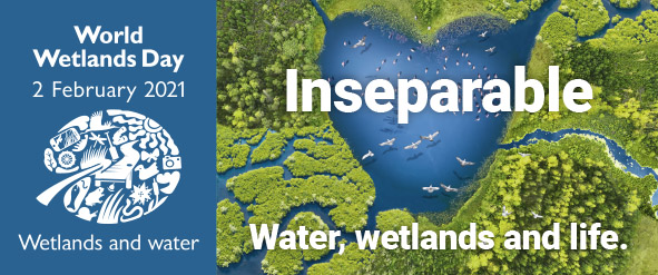 World Wetlands Day 2021 theme