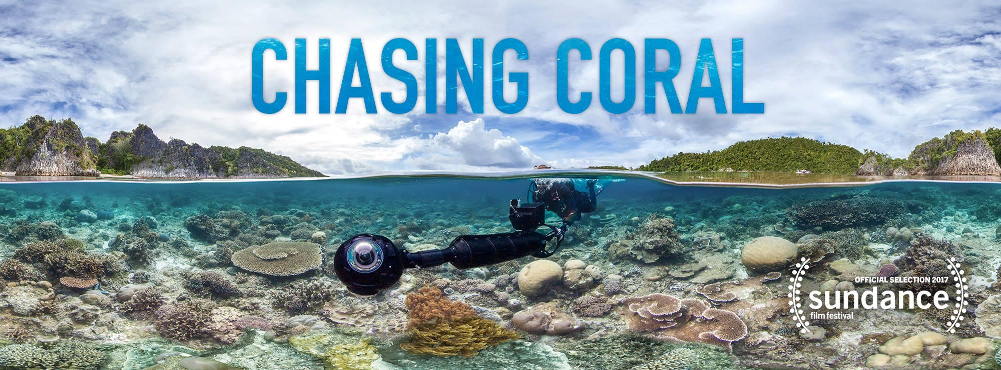 chasing_coral_wide.jpg