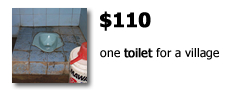 $110 provides one toilet for a village