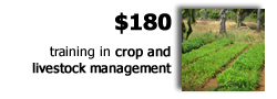 $180 provides on-the-spot training in crop and livestock management