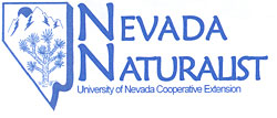 NevadaNaturalistLogo.jpg