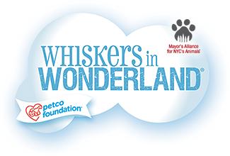banner-whiskersinwonderland-generic.png