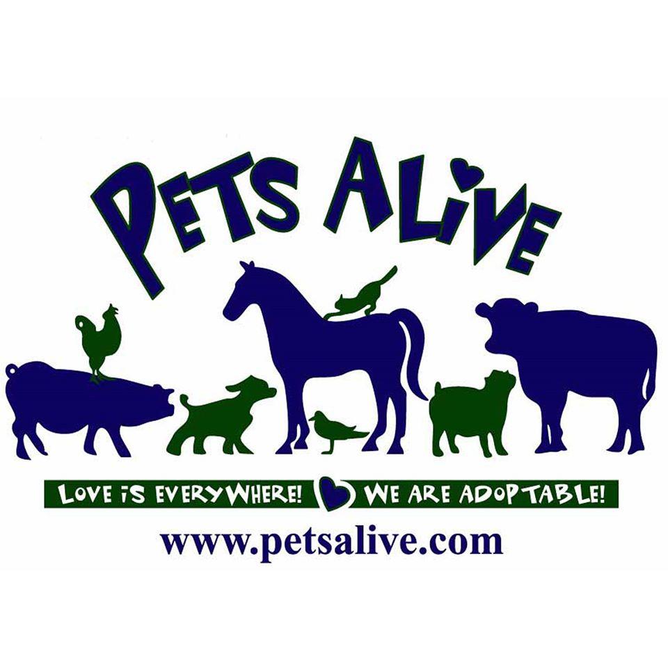 Pets Alive!