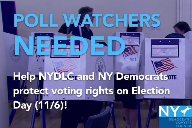 NYDLC_2018_Voter_Pro_Recruitment_Graphic_.jpeg