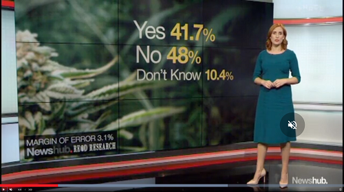 Newhub June 2019 cannabis legalisation poll results