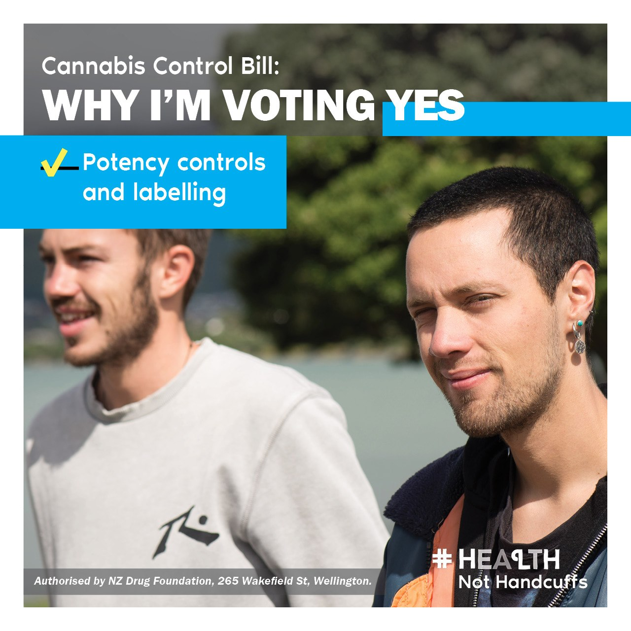 Why_Im_Voting_Yes_Potency_controls_and_labelling.jpg