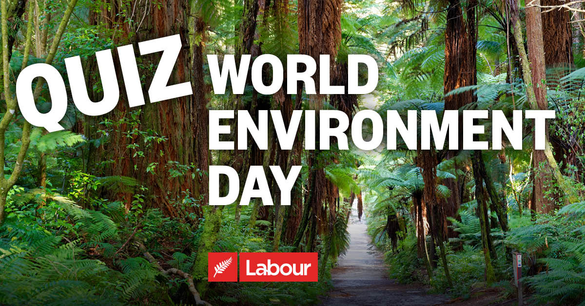 How much do you know about Aotearoa's unique environment? thumbnail