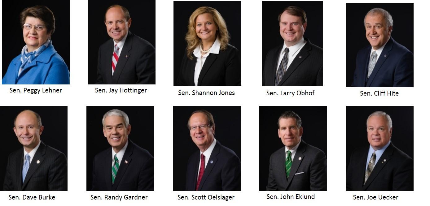 Senate_Sponsors_-_pain-capable.png.jpg