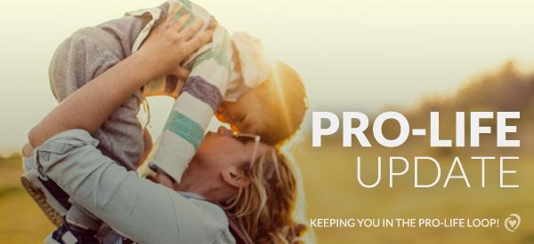 Pro-life_Update_2017_Banner.jpg