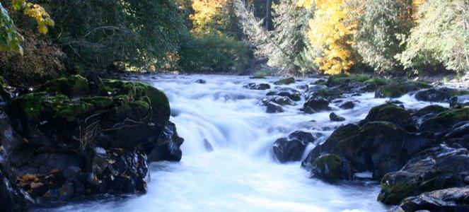 Cowichan-River-falls-web.jpg