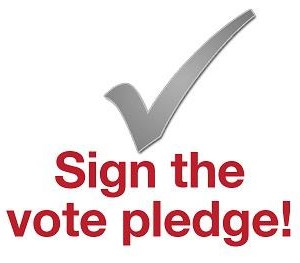 vote_pledge_2013.jpg