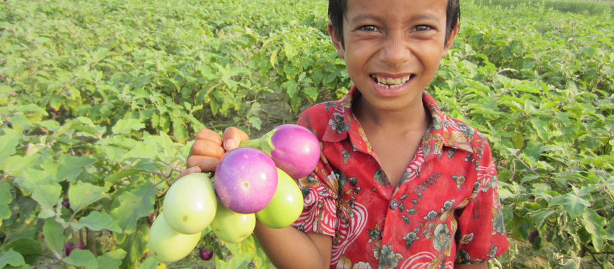 12 foods helping kids fight malnutrition in Asia
