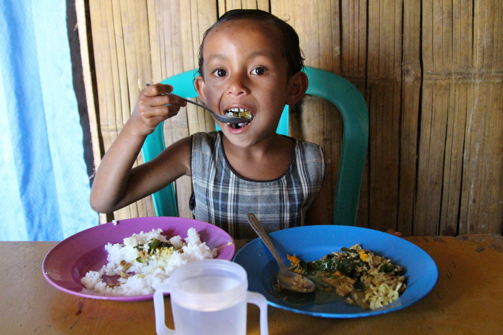 New Years' Resolutions: Improved nutrition for all children