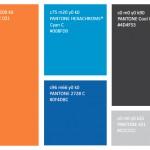 Official-Colours-150x150.jpg
