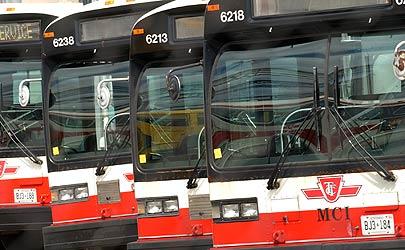 Buses.jpeg