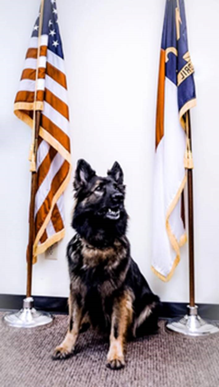 K-9 Officer Viper Dies