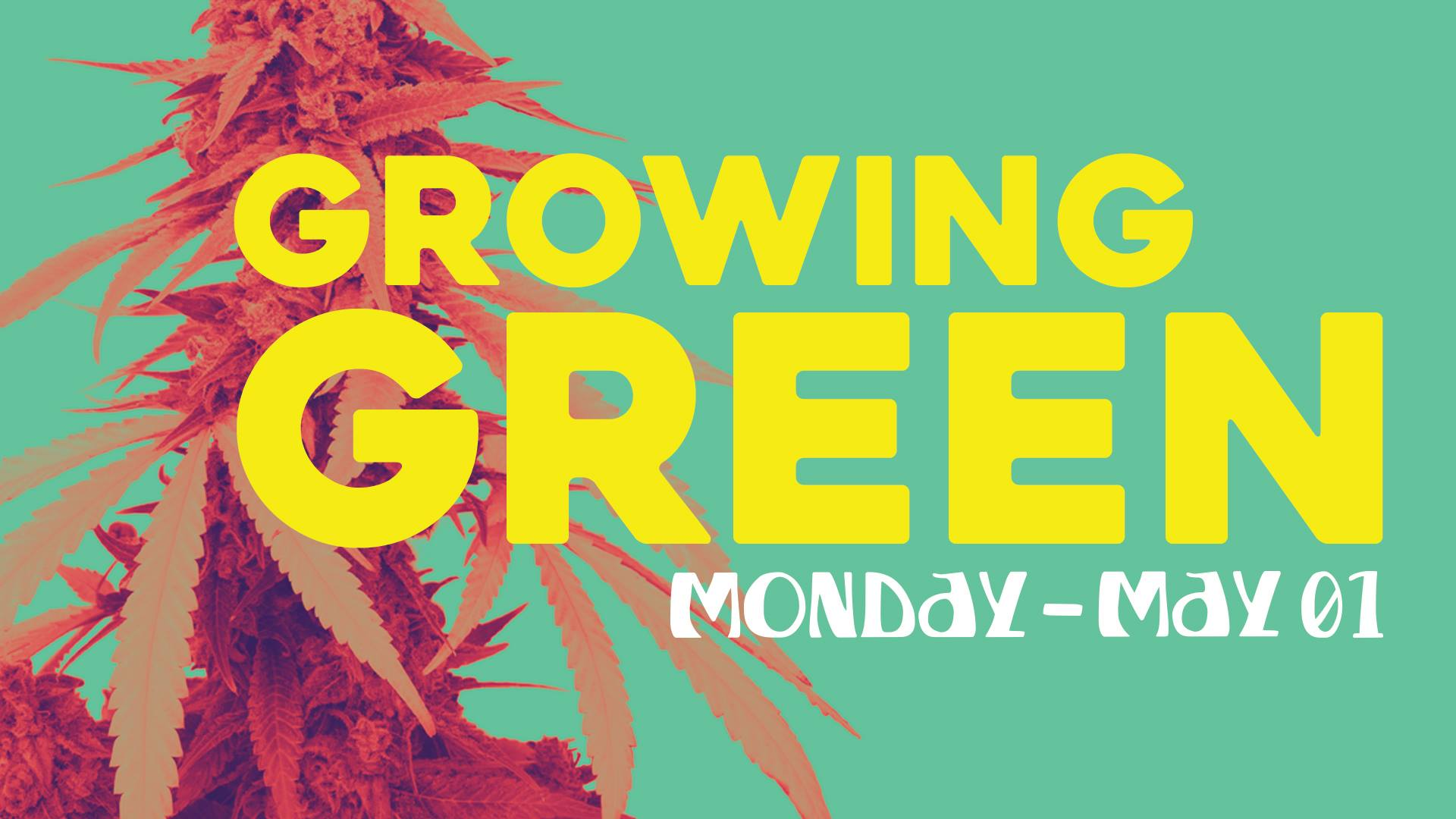 We_Do_HR_Going_Green.jpg