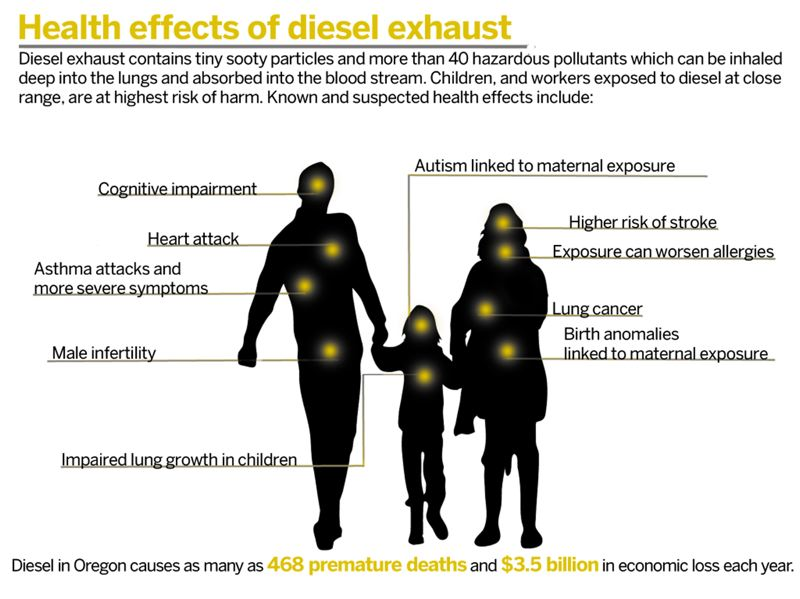 Diesel exhaust contains tiny sooty particles and more than 40 hazardous pollutants which can be inhaled deep into the lungs and absorbed into the blood stream. Children and workers exposed to diesel at close range are at the highest risk of harm. Known and suspected health effects include: cognitive impairment, heart attack, asthma attacks and more severe symptoms, male infertility or birth defects and autism linked to maternal exposure, impaired lung growth in children, higher risk of stroke, worsened allergies, lung cancer. Diesel in Oregon causes as many as 468 premature deaths and $3.5 billion in economic loss each year.