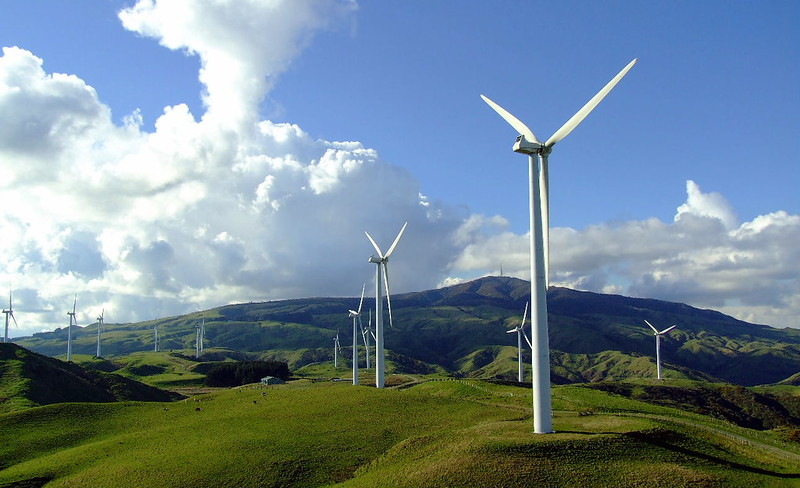 Windfarm, Manawatu. Turinbes set in paddocks.