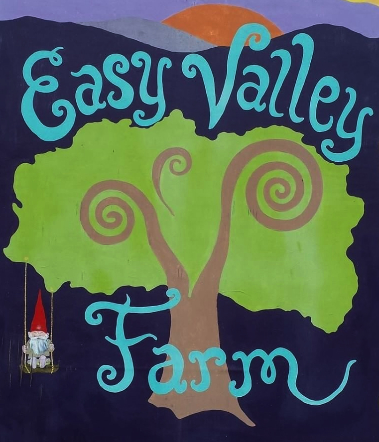 easy_valley_logo.jpg